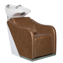 Washing chair Edmonton